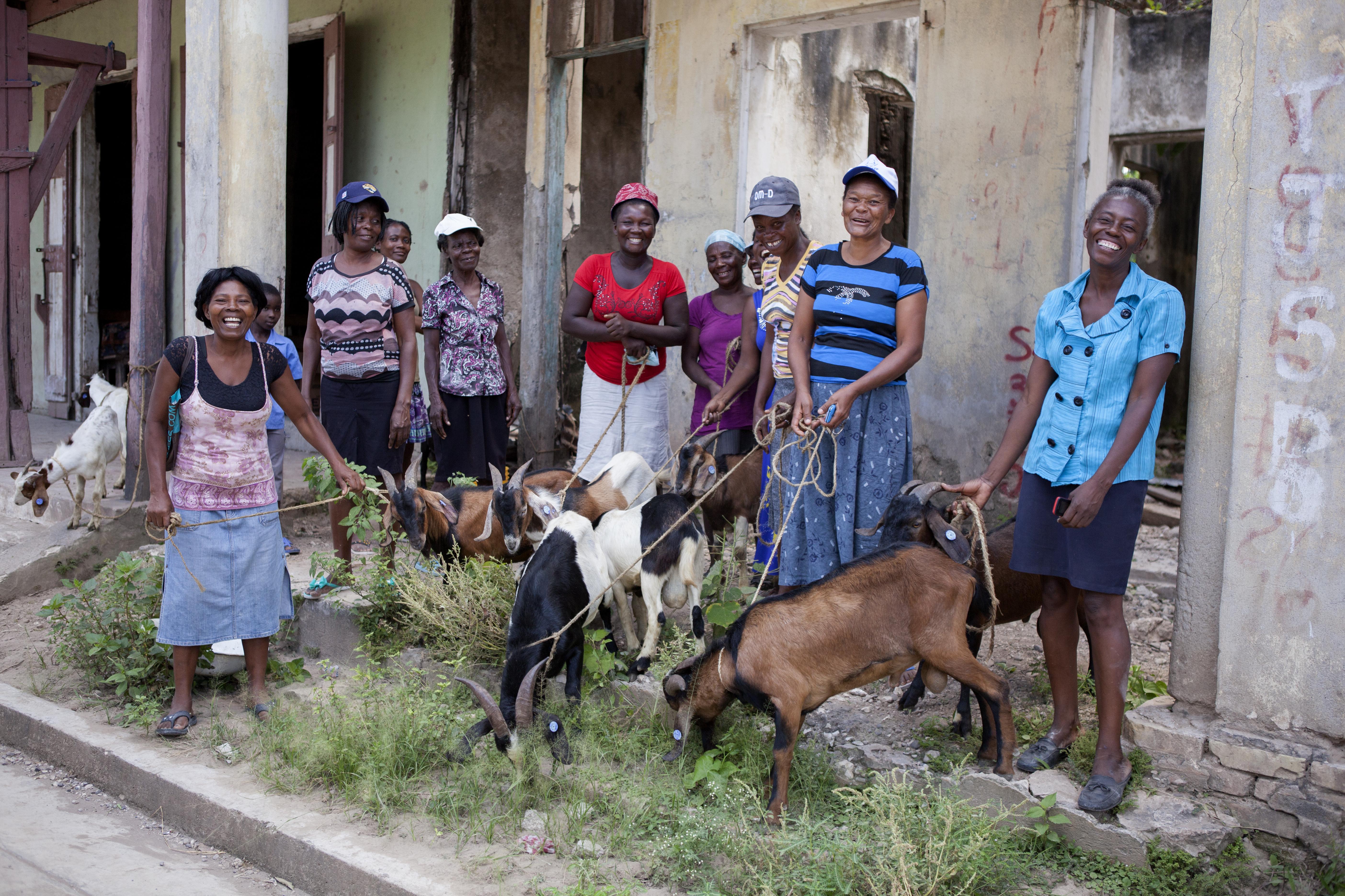 Réhabilitation et résilience post-ouragan Matthew en Haïti Vignette