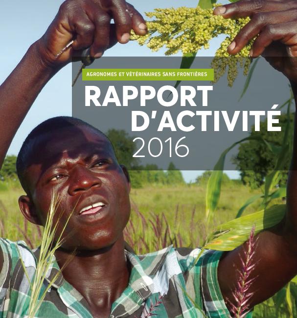Rapport d'activité 2016 Image principale
