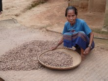 Biodiversity and food security in northern Laos Vignette