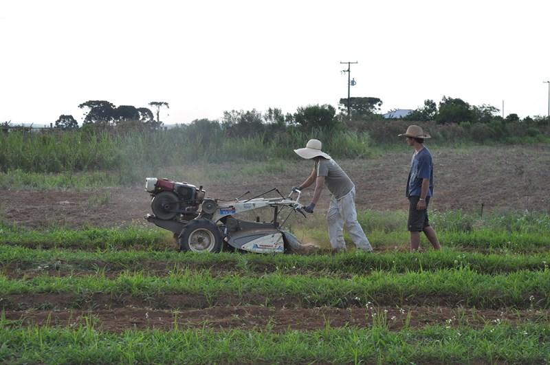 Agroécologie Parana (4).jpg