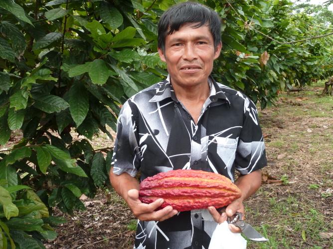 Agricultura sostenible para los Awajun en la Amazonia peruana  Image principale