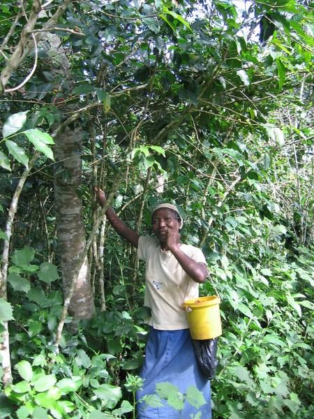 Bénéficiaire dans son jardin créole_6846711427_o.jpg