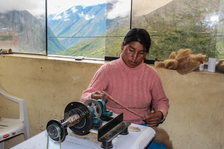 Ganadería de alpacas en Cuzco, Perú Image principale