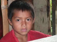 A la découverte d'un autre monde : au coeur du territoire des Awajun en Amazonie péruvienne Vignette