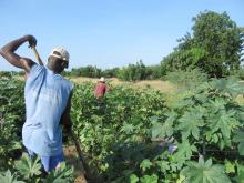 Pour une justice sociale de l'eau agricole Vignette