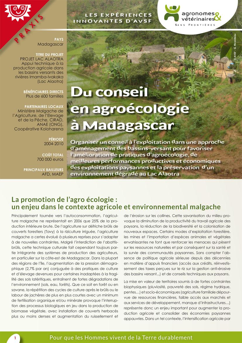 Les actions innovantes d'AVSF : du conseil en agroécologie à Madagascar Image principale