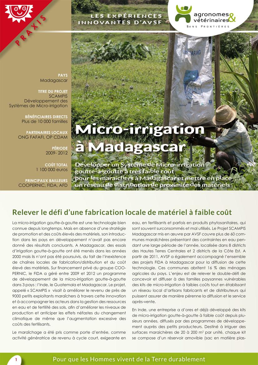 Les expériences innovantes d'AVSF : micro-irrigation à Madagascar Image principale