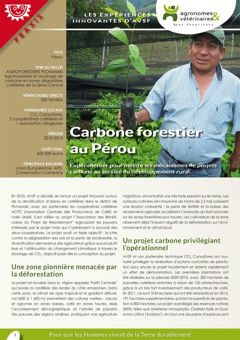 Les expériences innovantes d'AVSF : carbonen forestier au Pérou  Image principale