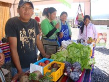 Marchés solidaires : du champ à l'assiette Vignette