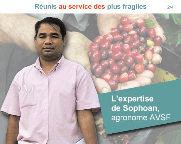 Sophoan, agronome AVSF Vignette