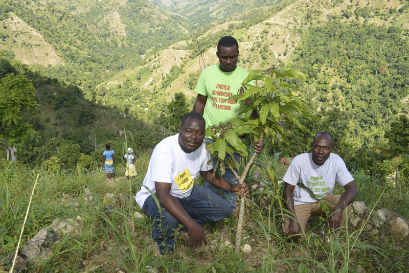 Les agronomes de Crose avec Francis Joseph, paysans , dans sa parcelle, devant l'arbre planté.jpg