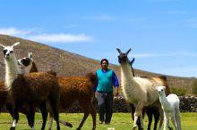 Autonomie et développement des territoires indiens en Bolivie Vignette