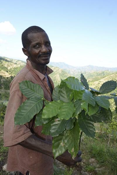 Un paysan de Michineau va replanter un arbre (1).jpg