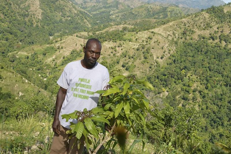 Francis David (Michineau) a replanté des arbres dans sa parcelle (4).jpg