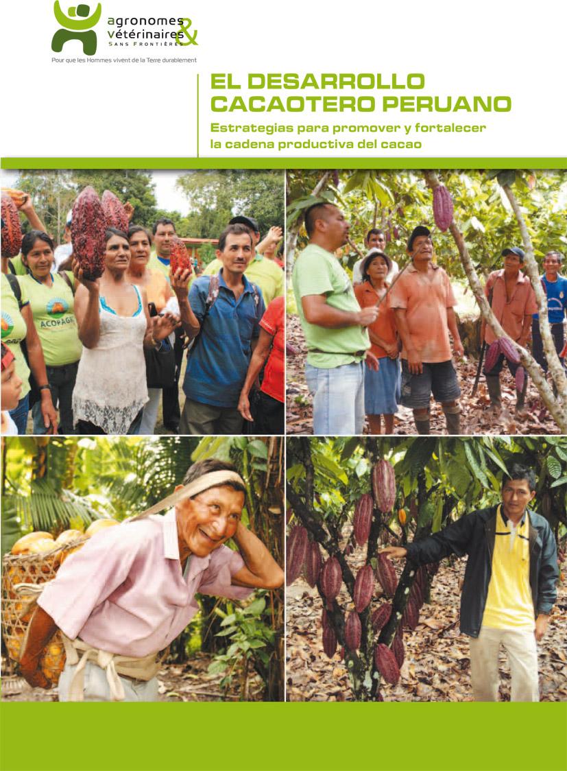 El desarrollo cacaotero peruano: estrategias para promover y fortalecer la cadena productiva del cacao Image principale