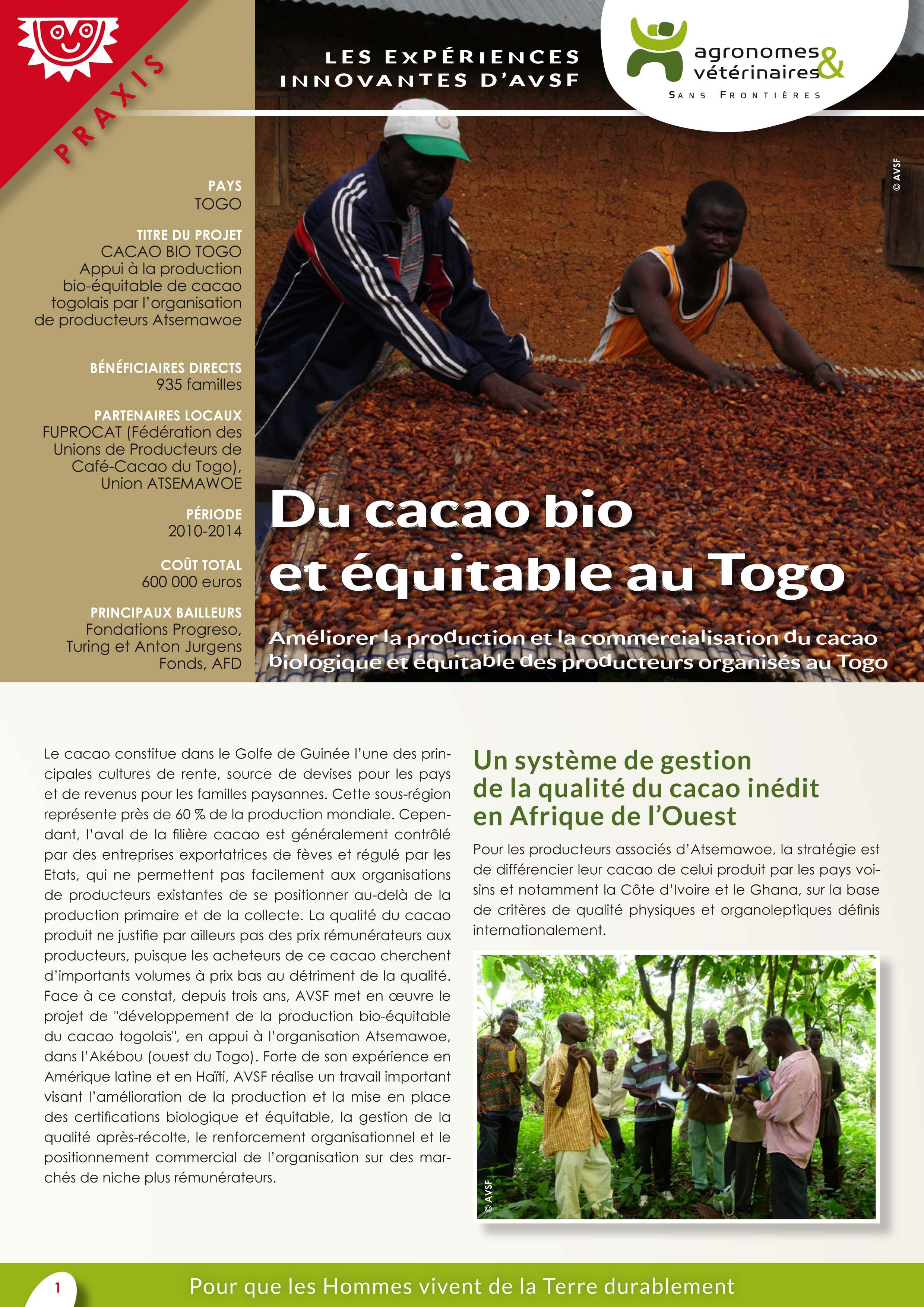 Les expériences innovantes d'AVSF : Du cacao bio et équitable au Togo Image principale