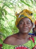 Durabilité et résilience de l'agriculture familiale dans la région des Savanes au Togo Vignette