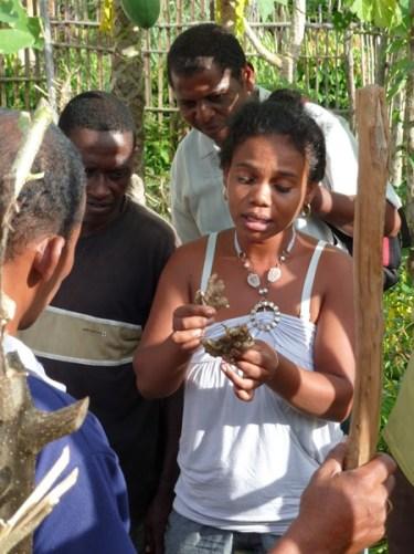 Des coopératives plus fortes à Madagascar Image principale