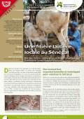 Lex expériences innovantes d'AVSF : Une filière laitière locale au Sénégal Vignette
