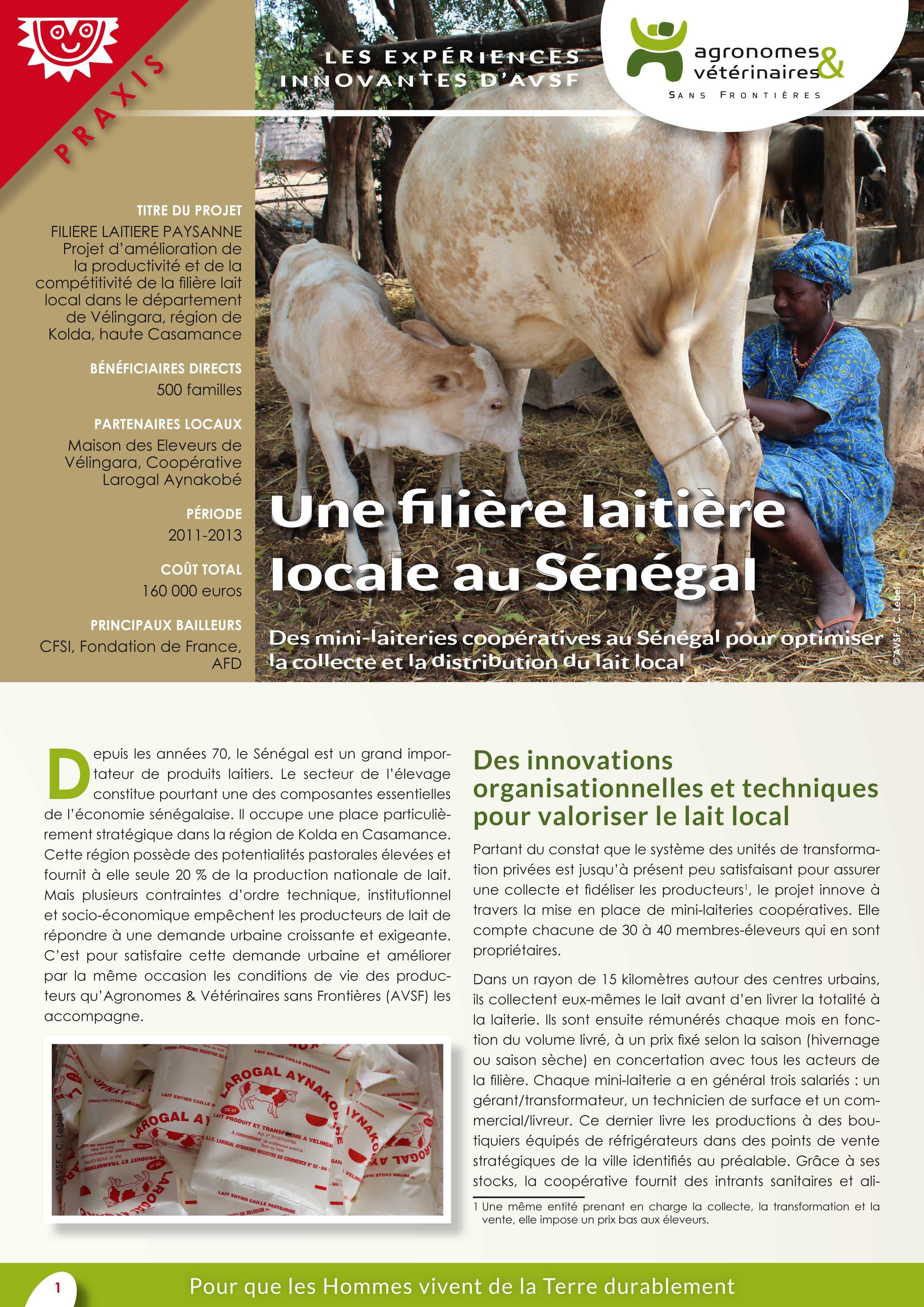 Lex expériences innovantes d'AVSF : Une filière laitière locale au Sénégal Image principale