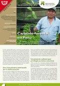 Las experiencias innovadoras de AVSF: Carbono forestal en Perú Vignette