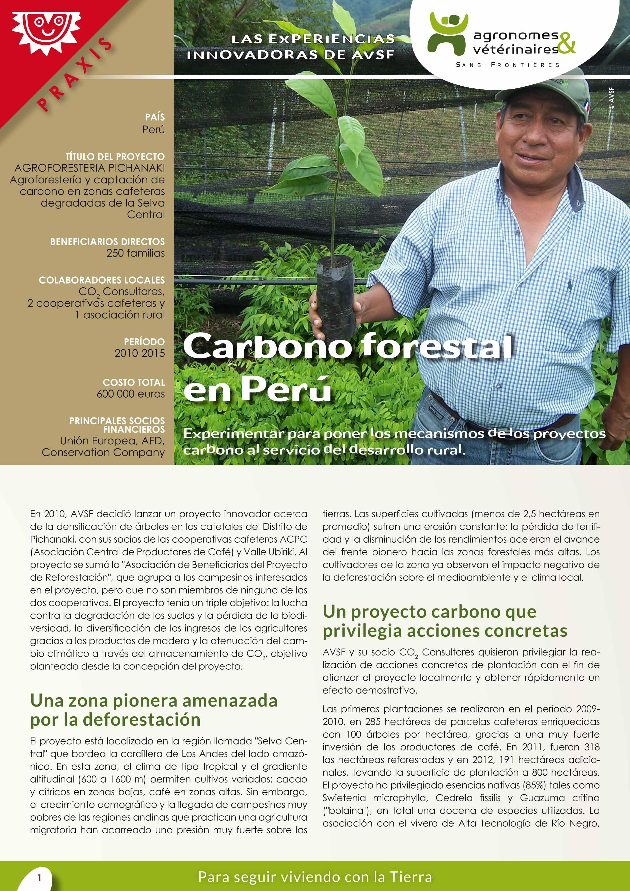 Las experiencias innovadoras de AVSF: Carbono forestal en Perú Image principale