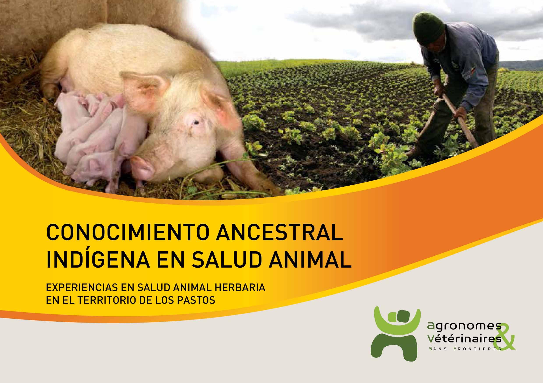 Conocimiento ancestral indigena en salud animal en el territorio de los Pastos (Colombia) Image principale