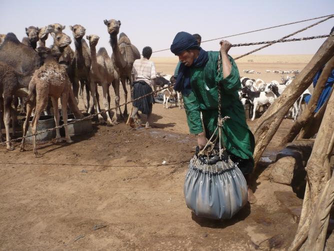 AVSF vous invite à un Forum et une Table ronde sur le Sahel Image principale
