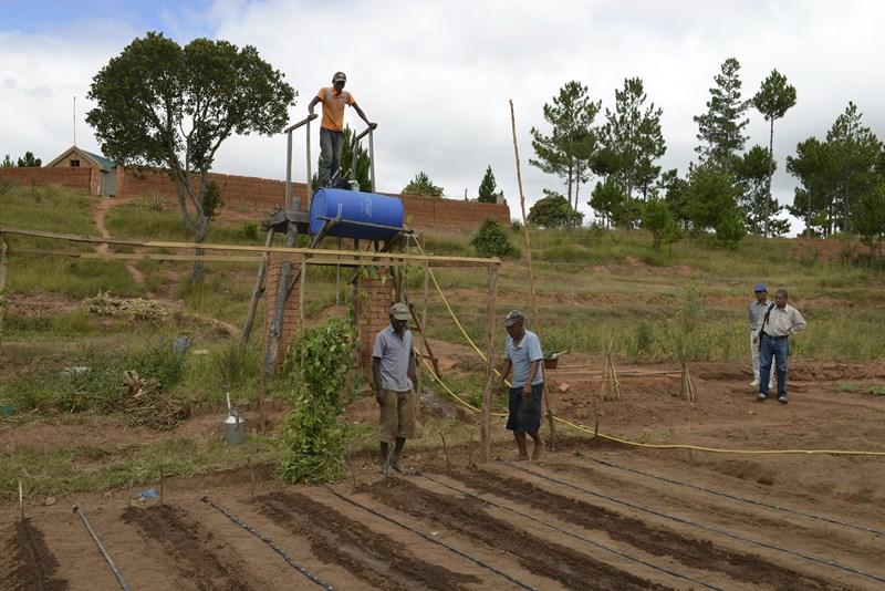 9- Chez.. Robin RABEFARITRA, maraîcher à Imerintsiatosika, à 30 km d'Antananarivo (Madagascar) (2).jpg