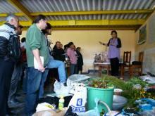 La etnoveterinaria vuelve a los campos del Ecuador Vignette