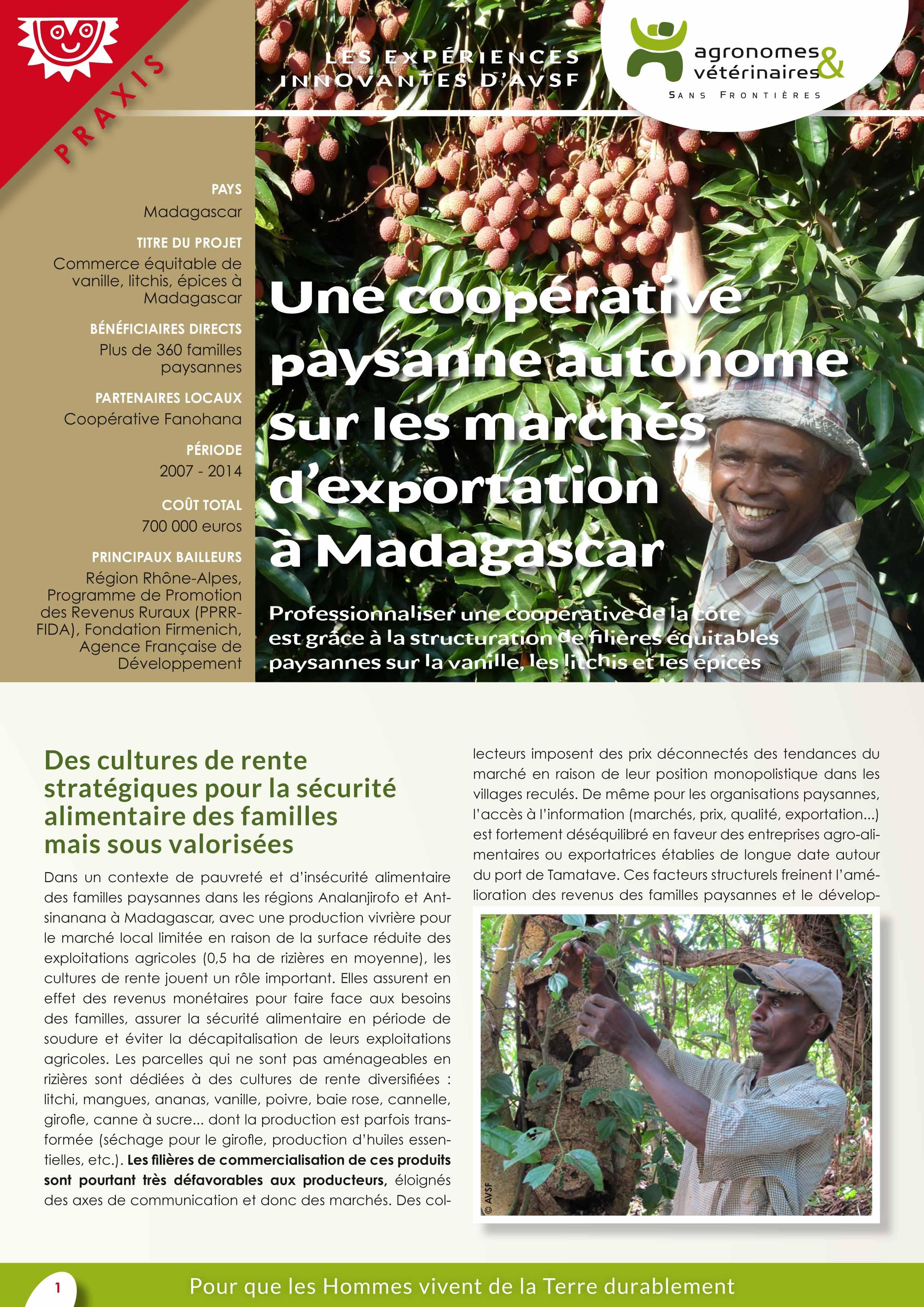Les expériences innovantes d'AVSF : Les expériences innovantes d'AVSF : Une coopérative paysanne autonome sur les marchés d'exportation à Madagascar Image principale