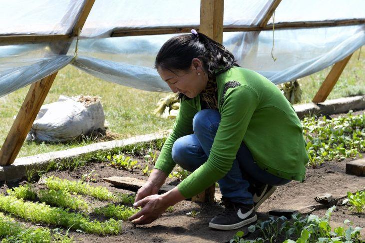 Une nouvelle plateforme commune sur les innovations paysannes Image principale