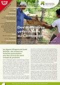 Les expériences innovantes d'AVSF : Des auxiliaires vétérinaires au Cambodge Vignette