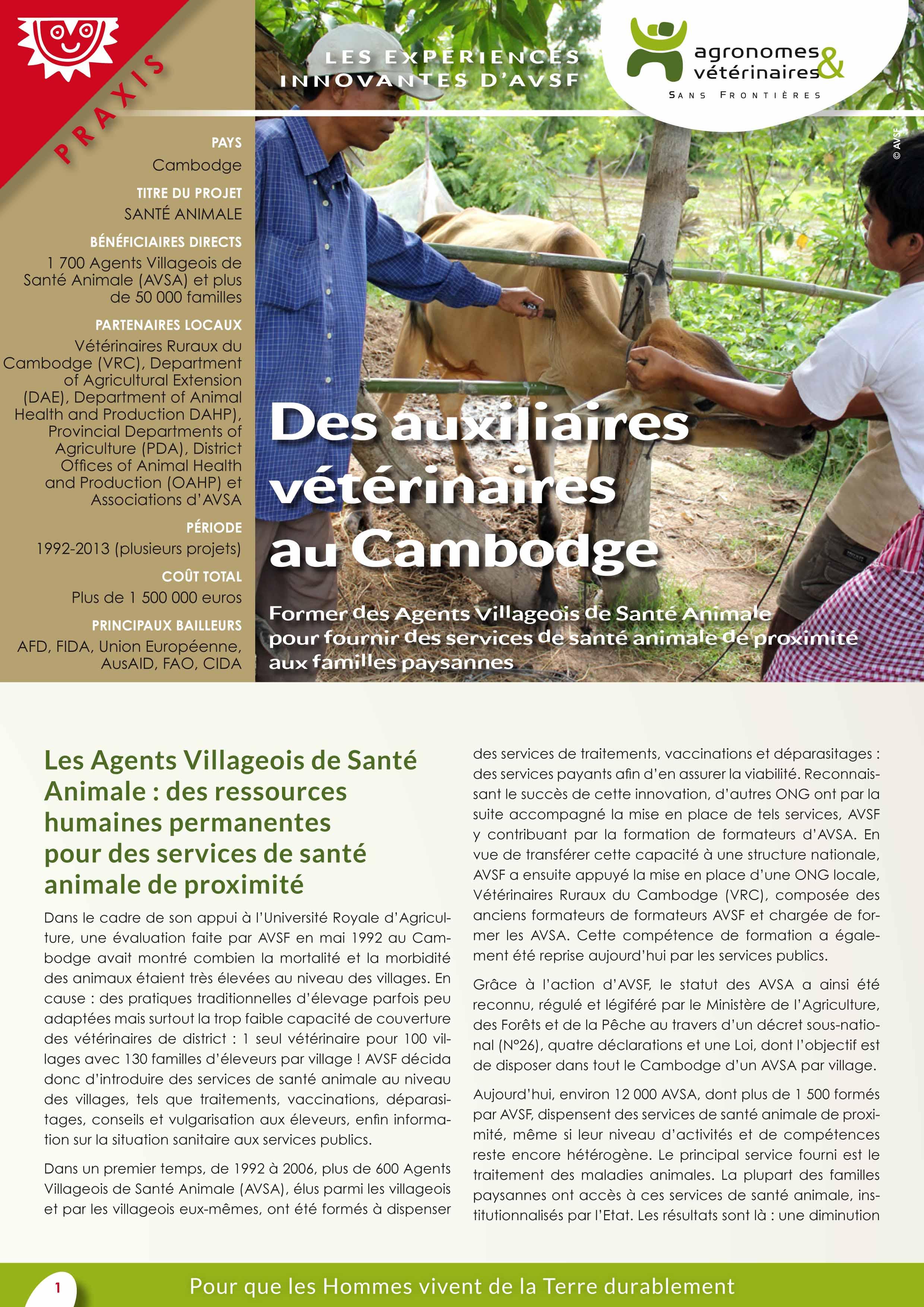 Les expériences innovantes d'AVSF : Des auxiliaires vétérinaires au Cambodge Image principale