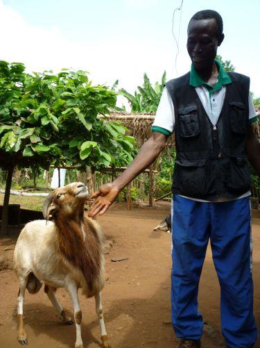 Véto écolo au Togo Image principale