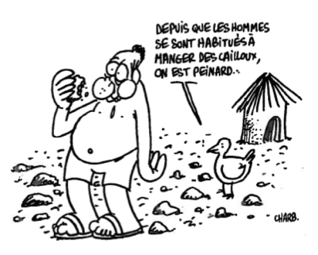 AVSF solidaire de Charlie Hebdo Image principale