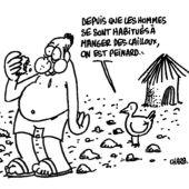 AVSF solidaire de Charlie Hebdo Vignette