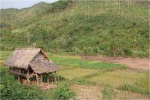 Laos, nouveau grenier du Sud-est asiatique : pour le meilleur ou pour le pire ? Vignette