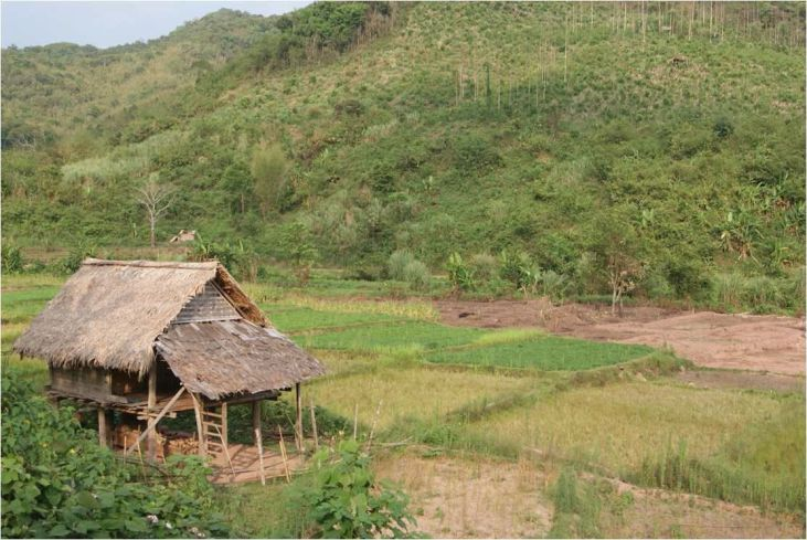Laos, nouveau grenier du Sud-est asiatique : pour le meilleur ou pour le pire ? Image principale