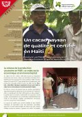 Les expériences innovantes d'AVSF : Un cacao paysan de qualité et certifié en Haïti  Vignette
