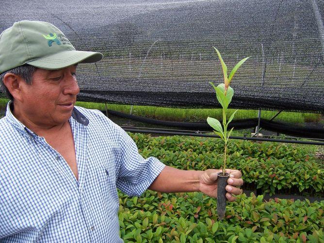 Revenus en plus, CO2 en moins au Pérou Image principale