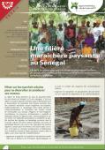 Les expériences innovantes d'AVSF : Une filière maraîchère paysanne au Sénégal Vignette