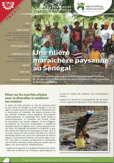 Les expériences innovantes d'AVSF : Une filière maraîchère paysanne au Sénégal Image principale