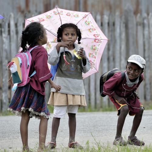 Les jeunes au cœur du développement rural  Image principale