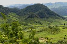 L'agroécologie, solution contre le réchauffement climatique Vignette