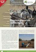 Les expériences innovantes d'AVSF : Gestion pastorale au sénégal  Vignette