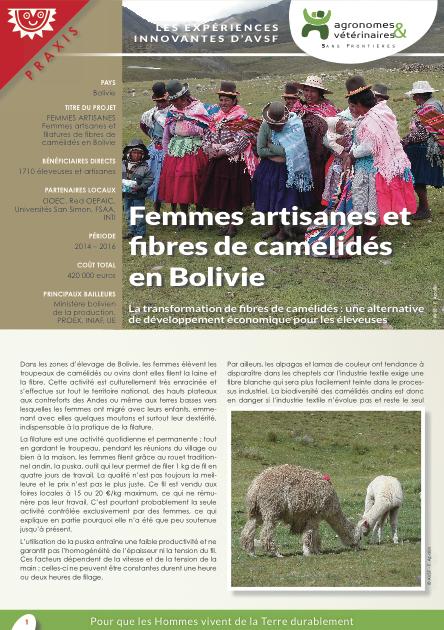 Les expériences innovantes d'AVSF : Femmes artisanes et  fibres de camélidés en Bolivie  Image principale