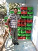 Des petites entreprises paysannes sur le Plateau Central en Haïti    Vignette
