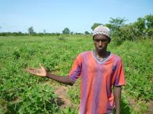 Des petites entreprises rurales de transformation de produits agroécologiques au Sénégal Vignette