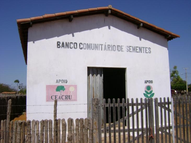 Des maisons pour stocker les semences de maïs au Brésil Image principale